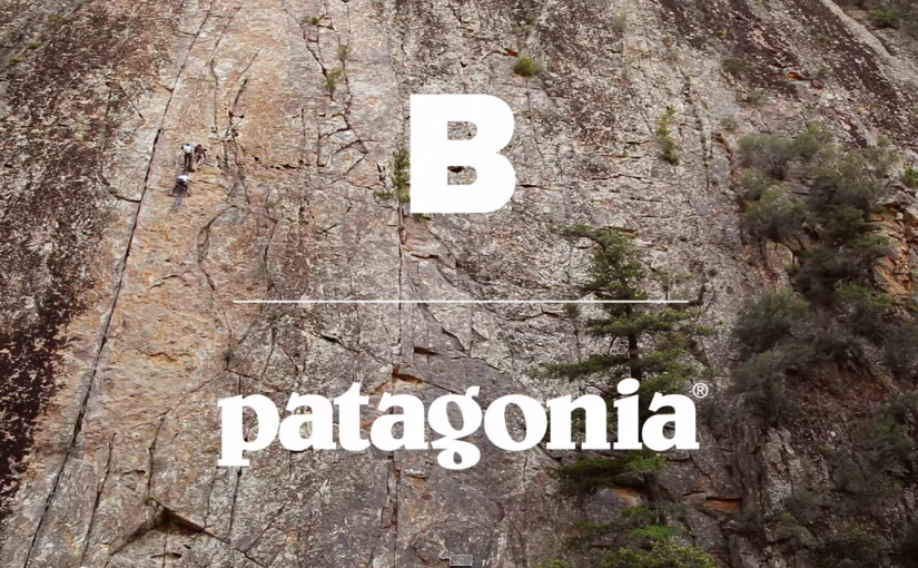 patagoniaB